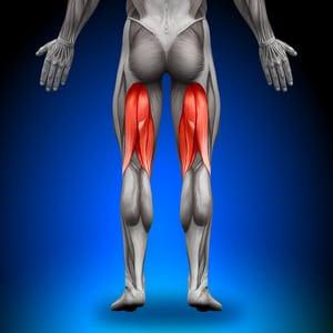 hamstring tendonitis
